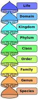 BIOLOGICAL CLASSIFICATIONS