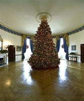 christmas-tree-white-house