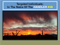 Targeted Individuals In The Name Of The HANDLER #3B [YAHUWAH